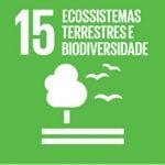 Proteger, recuperar e promover o uso sustentável dos ecossistemas terrestres, gerir de forma sustentável as florestas, combater a desertificação, deter e reverter a degradação da terra e deter a perda de biodiversidade