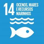 Conservação e uso sustentável dos oceanos, dos mares e dos recursos marinhos para o desenvolvimento sustentável
