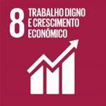 Promover o crescimento econômico sustentado, inclusivo e sustentável, emprego pleno e produtivo e trabalho decente para todos